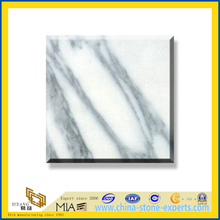 Arabescato Marble Slabs for Wall and Flooring(YQC)