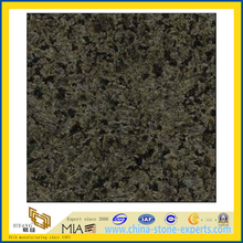 Polished Chengde Green Granite for Countertops / Vanity Top (YQZ-G1003)