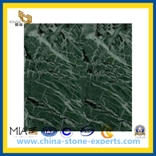 Polished India Medium Green Marble for Flooring and Wall(YQC)
