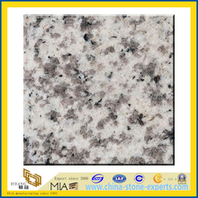 Polished White G655 Granite Slabs for Countertops (YQZ-G1026)