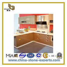 Pure White Quartz Countertop for Kitchen and Bathroom (YQC-ASQ1009)