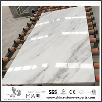 New Quality Arabescato Venato White Marble for Bathroom Decoration (YQW-Alice060201)