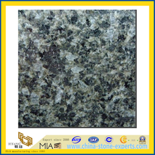 Polished Guangxi Green Granite Slabs for Countertops (YQZ-G1036)