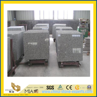 Chinese Bala White Granite Tiles for Wall/Flooring