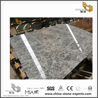 Alpinus White Marble floor/wall for interior design(YQN-091302)