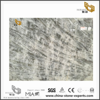 Alpinus White marble wall in the living room(YQN-091303)