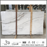 New Polished Arabescato Venato White Marble Slabs for Bathroom Wall Tiles (YQW-MSA06051902)